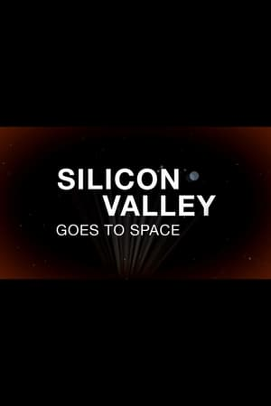 Silicon Valley Goes to Space (2013)