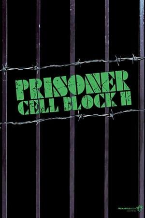 Image Prisoner