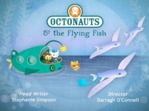 The Octonauts Season 1 Episode 5