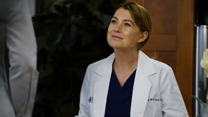 Grey's Anatomy Season 13 :Episode 15  Civil War