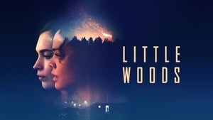Watch Little Woods 2018 Full Movie Online Free Streaming