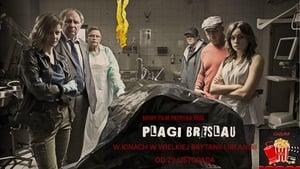 Plagi Breslau (2018)