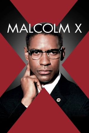 Malcolm X Torrent, Download, movie, filme, poster
