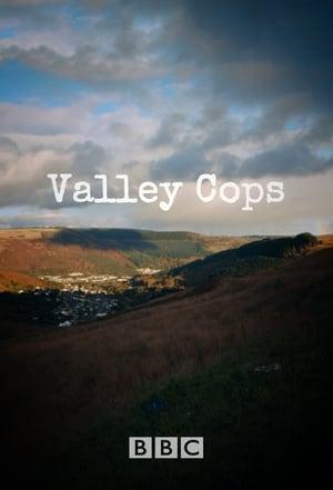 Image Valley Cops