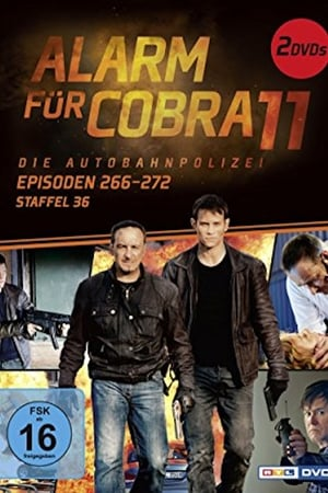 Alarm for Cobra 11: The Motorway Police