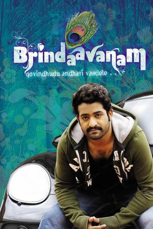 The Super Khiladi (Brindavanam) (2010) Hindi Dubbed