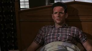 It's Always Sunny in Philadelphia: S07E10
