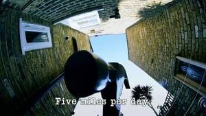 Five Miles Per Day