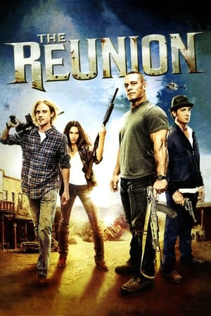 The Reunion (2011) Movie BluRay Dual Audio Hindi Eng