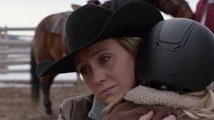 Watch S14E7 - Heartland Online