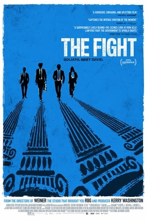 Image The Fight