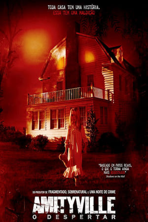 Amityville: O Despertar Torrent, Download, movie, filme, poster