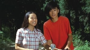 Japanese movie from 1974: Love is in the Green Wind