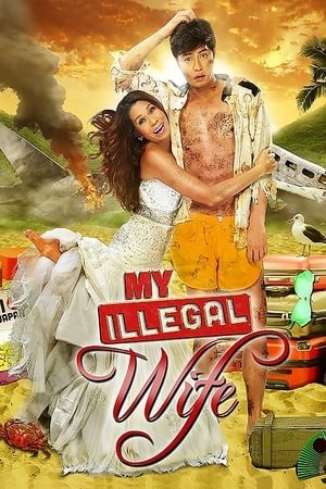 My Illegal Wife poster