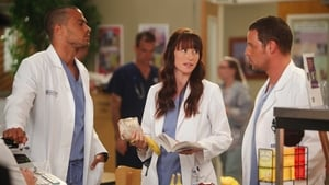 Grey's Anatomy S08E08