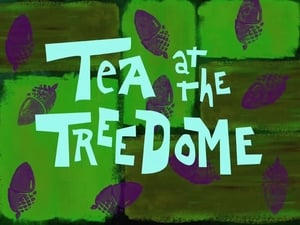 SpongeBob SquarePants Season 1 : Tea at the Treedome