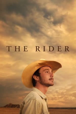 The Rider cover