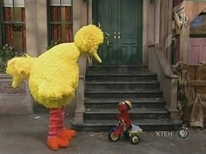 Big Bird Breaks Elmo's Tricycle
