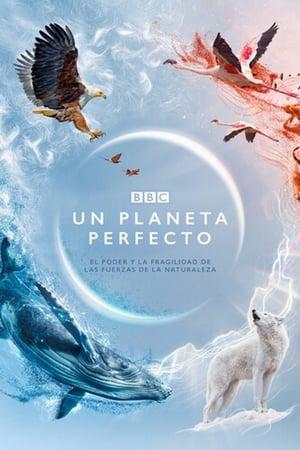 Un planeta perfecto