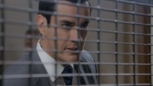 Laws of love Season 2 Episode 91