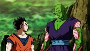 Dragon Ball Super: 1×119