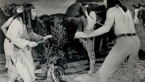 Apache Warrior – Οι δολοφονοι των ασπρων βραχων