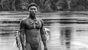 Embrace of the Serpent izle