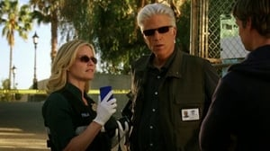 HD series online CSI: Crime Scene Investigation Season 12 Episode 17 Trends with Benefits
