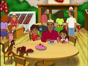 Go, Diego, Go!: Season 3 Episode 7