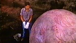 The Curse (1987)