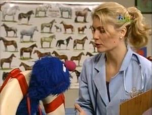 Sesame Street Season 36 :Episode 20  Gina's Vet Assistant