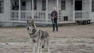 Assistir Absentia: 3 Temporada Episódio 6
