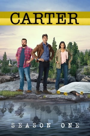 Baixar Carter 1ª Temporada (2018) Dublado via Torrent