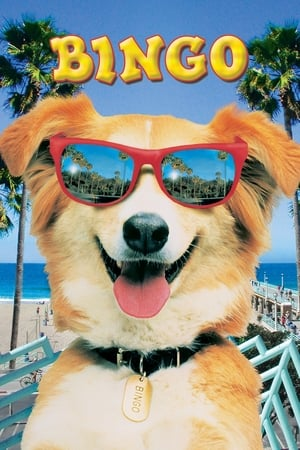 Bingo: Esperto pra Cachorro Torrent (1991) Dublado WEB-DL 720p RMZ - Download