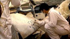 Mayday Season 7 :Episode 3  Scratching the Surface (China Airlines Flight 611)