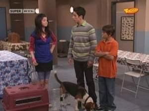Wizards of Waverly Place: s1e8