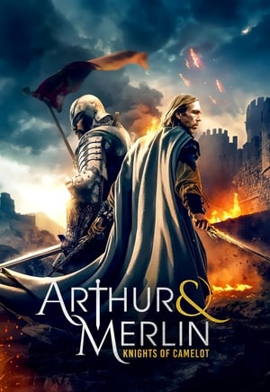 Arthur & Merlin: Knights of Camelot - Poster