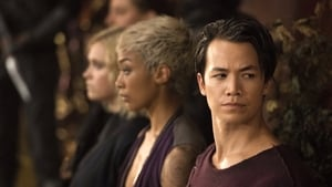 The 100: 7×3
