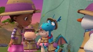 Stuffy's Safari