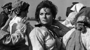 Serbian movie from 1962: Siberian Lady Macbeth