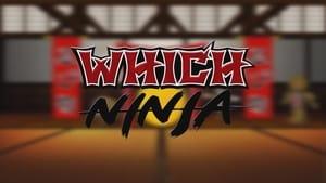 Which Ninja
