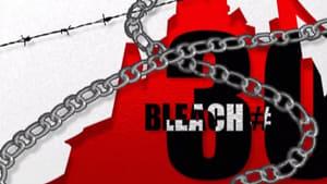 Bleach: 1×30