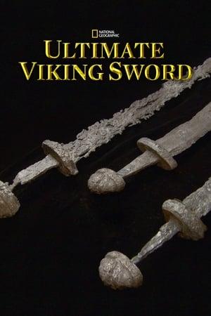 Secrets of the Viking Sword-Jay O. Sanders