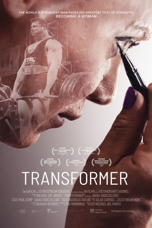 Transformer (2017)