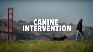 Canine Intervention (2021)