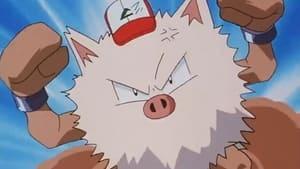 Pokémon Season 1 :Episode 25  Primeape Goes Bananas