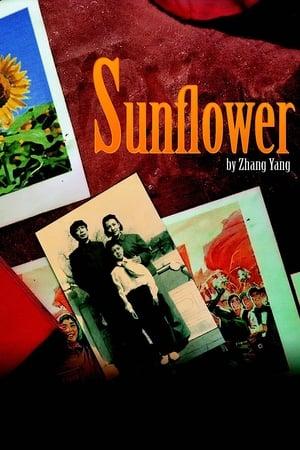 Sunflower-Joan Chen