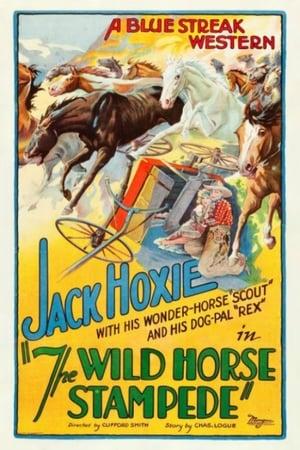 The Wild Horse Stampede
