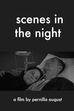 Play Scenes in the Night