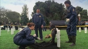Bones Season 1 :Episode 21  The Soldier on the Grave